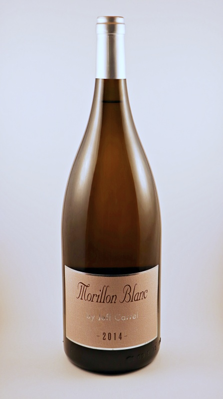 Morillon Blanc